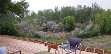 Bear Creek wetland from BunkHouse deck 20120519